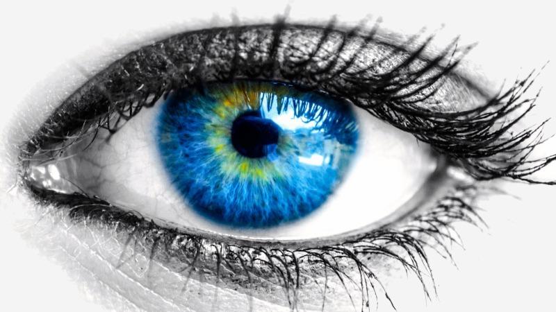 vpliv antioksidantov na izboljšanje vida