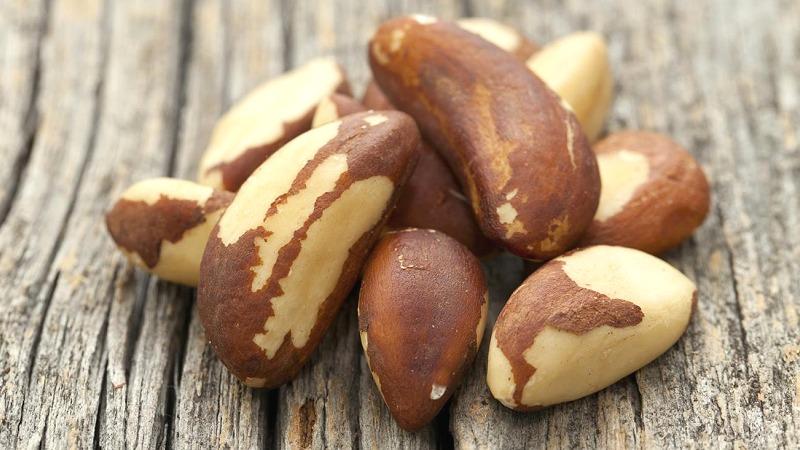 brazilski orehi