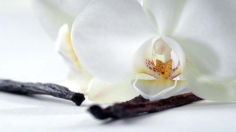 naravna vanilija